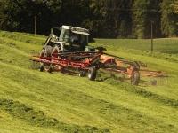 Esonero Covid-19 imprese agricole e pesca: domande differite