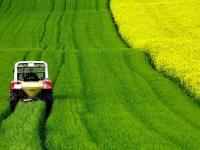 Salari medi agricoltura 2021: indicazioni Ministero Lavoro